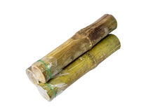 Bamboo rice,Khao lam cylinder packed thai snack food Royalty Free Stock Image
