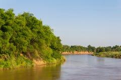 Bamboo river island Stock Photos