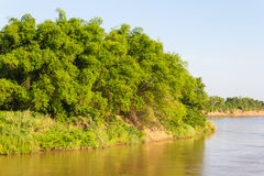 Bamboo river island Royalty Free Stock Image