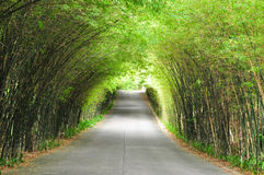 Bamboo road. The walkway of bamboo road to long destination Royalty Free Stock Photography