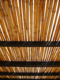 Bamboo roof Stock Photography