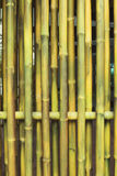 Bamboo room. Royalty Free Stock Images