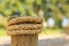 Bamboo and rope tied Stock Images
