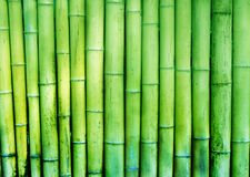 Bamboo  rustic  wall fence  textured background Royalty Free Stock Photo