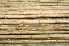 Bamboo Scaffolding Construction Poles Stock Image