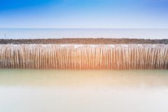 Bamboo seacoast wall barrier Royalty Free Stock Photo
