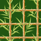 Bamboo seamless Royalty Free Stock Images