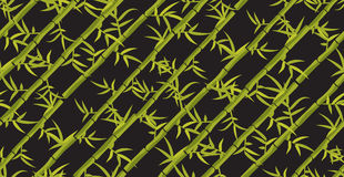 Bamboo seamless diagonal pattern. Royalty Free Stock Photos