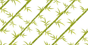 Bamboo seamless diagonal pattern. Stock Image