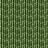 Bamboo Seamless Pattern Stock Image