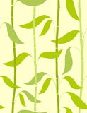 Bamboo - seamless pattern Royalty Free Stock Photography