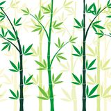 Bamboo Seamless pattern design Royalty Free Stock Photo