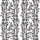 Bamboo seamless pattern Stock Images
