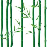 Bamboo seamless Stock Photo