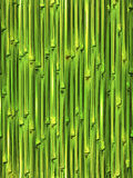 Bamboo seamless pattern Royalty Free Stock Photography