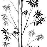 Bamboo Seamless Pattern Royalty Free Stock Photos