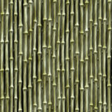 Bamboo Seamless Texture Stock Images