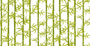 Bamboo seamless vertical pattern. Royalty Free Stock Photo