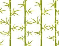 Bamboo seamless vertical pattern. Stock Image