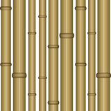 Bamboo seamless wallpaper Royalty Free Stock Photo