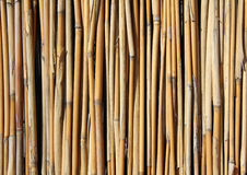 Bamboo set Royalty Free Stock Image