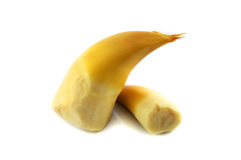 Bamboo Shoot cooking. On white background Royalty Free Stock Photo