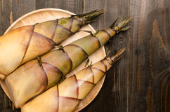 Bamboo shoot Stock Photos