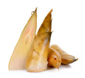 Bamboo shoot isolated on the white background Stock Photo