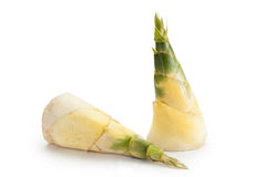Bamboo shoot. S or bamboo sprouts are the edible shoots (new bamboo culms that come out of the ground) of many bamboo species including Bambusa vulgaris and royalty free stock photography