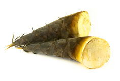 Bamboo shoot in Thailand. Raw bamboo shoot prepare for soup Stock Photography