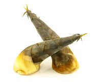 Bamboo shoot in Thailand. Raw bamboo shoot prepare for soup Royalty Free Stock Photography