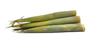 Bamboo shoot on white background Stock Photo