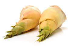Bamboo shoots Stock Images