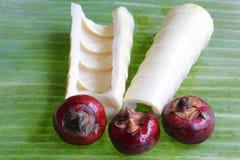 Bamboo Shoots & Water Chestnuts. Fresh bamboo shoots & water chestnuts on a fresh banana leaf stock photo