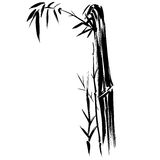 Bamboo Silhouette Drawing EPS. Bamboo silhouette drawing on a white background in  EPS Stock Photo
