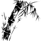 Bamboo Silhouette Drawing EPS. Hand drawn illustration of a bamboo black silhouette against a white background  in  EPS Stock Photography