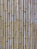 The bamboo slats Stock Images