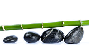 Bamboo and smooth pebbles Stock Images