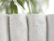 Bamboo Spa in Horizontal Royalty Free Stock Photos