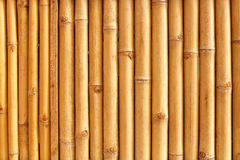 Bamboo stalks pattern Royalty Free Stock Photos