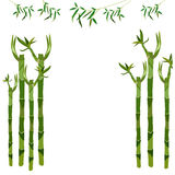 Bamboo stalks. Place for inscriptions. Vector Stock Photography