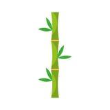 Bamboo stem natural icon Royalty Free Stock Photo