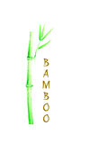 Bamboo stem Stock Photos