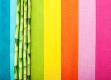 Bamboo stems on colorful  fabric texture Royalty Free Stock Photo