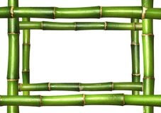 Bamboo stems frame border Stock Photos