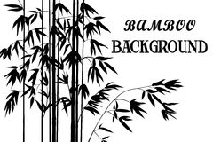 Bamboo Stems with Leaves Silhouettes Royalty Free Stock Photo