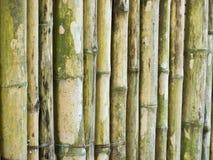 Bamboo stick Stock Photo