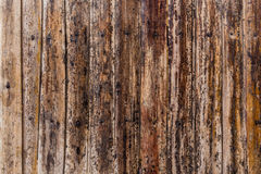 Bamboo stick wooden texture Royalty Free Stock Photography