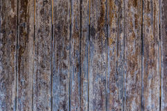 Bamboo stick wooden texture Royalty Free Stock Photo