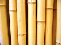 Bamboo sticks. Bamboo stick covering a wall Royalty Free Stock Photo